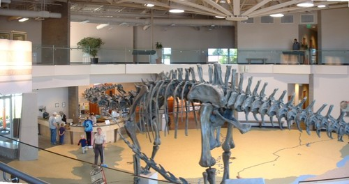 Diplodocus in the lobby of the Utah Field House of Natural History State Park